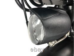 Scooter À Cycle Électrique Fixe Cnebikes 36v/350w 8.8ah Pour Fauteuil Roulant2020